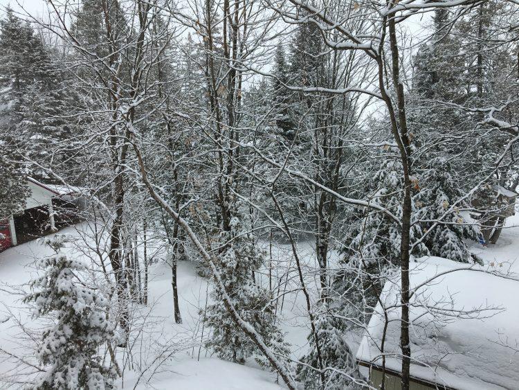 1er avril 2017 – Val Saint-Côme – Un paysage d'hiver inattendu !