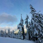 Mt Baker Ski Resort,WA – Fin semaine d'Ouverture Poudreuse!! – 18 novembre 2017
