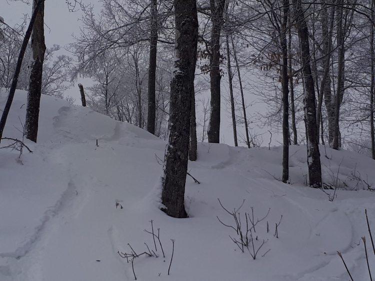 Mont Morin-Heights, 23 décembre 2017 sous la neige!
