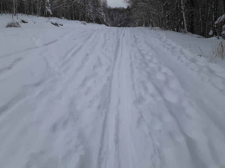 Mont Alta – Encore de la neige fraîche – 1 janvier 2020