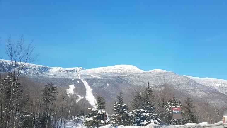 Stowe – conditions parfaites sous le soleil – 31 janvier 2020