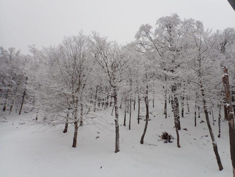 Tremblant nous dévoile ses charmes d'hiver