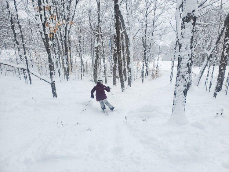 Lendemain de tempête à ski Garceau – 17 janvier 2021