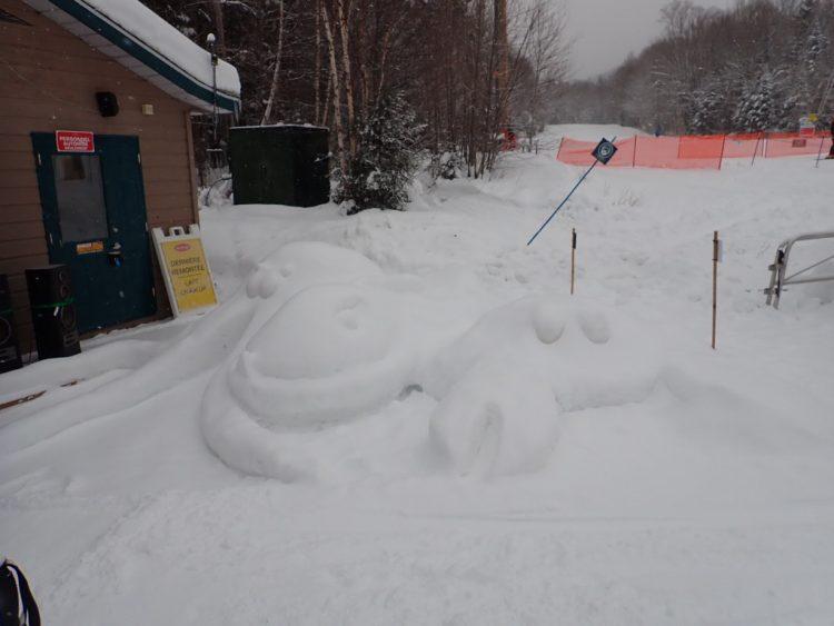 Il n'y a pas uniquement les skieurs qui aiment la neige