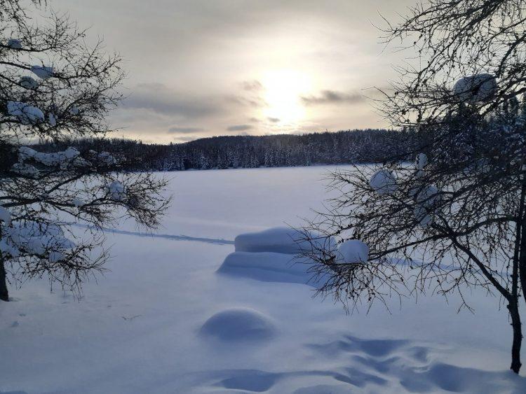 Expérience Boréale – Magnifique terrain de jeu – 23 janvier 2021