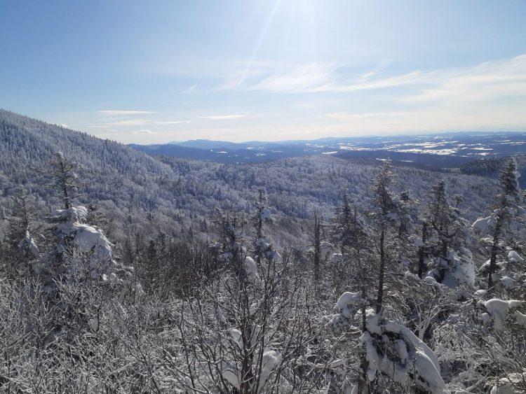 Mont Sutton – Soleil et sous-bois enneigés – 8 février 2021